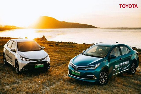 混动巨头丰田终于出手,2021年前推3款纯万博体育投注车